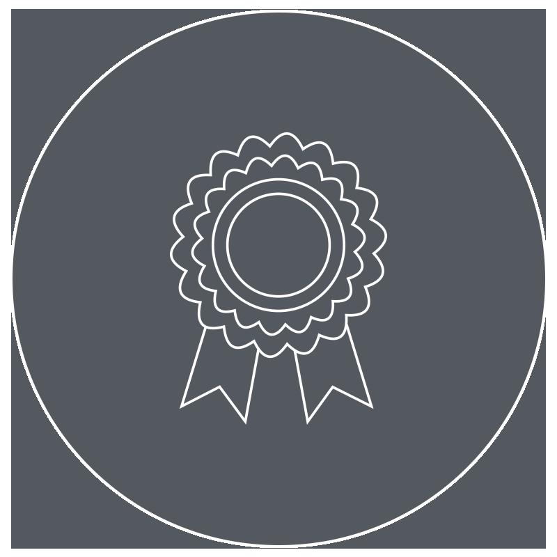 Icon grey - Assurance