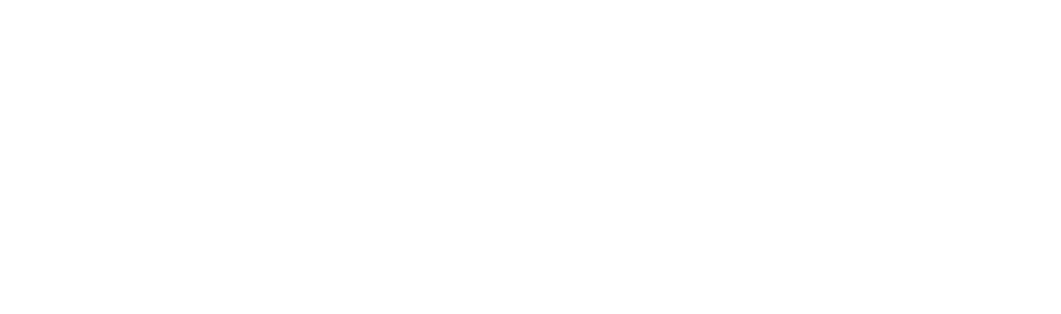 White Logo - TEAM