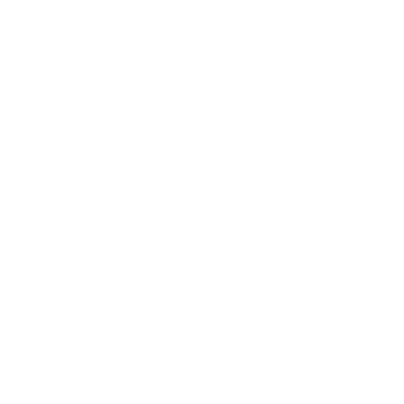 Icon - Briefcase inside circle